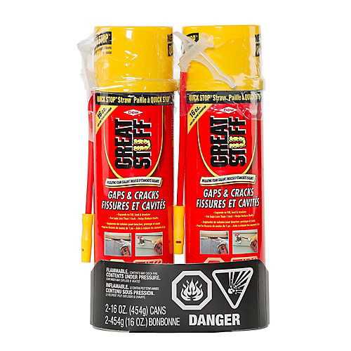 Gaps & Cracks Insulating Foam, 454 g (2-Pack)