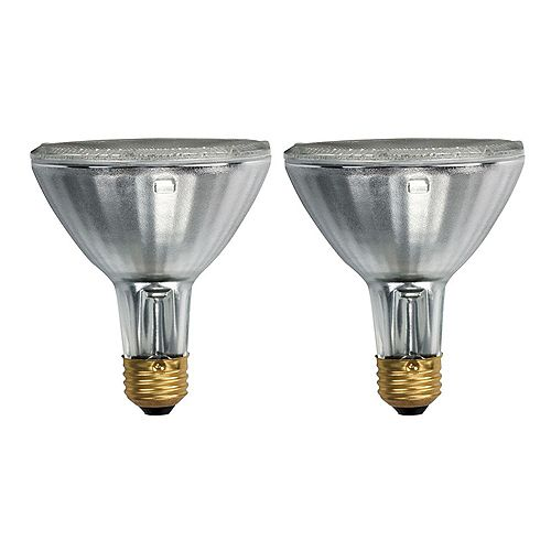 75W Halogen PAR30 Flood Light Bulb (2-Pack)