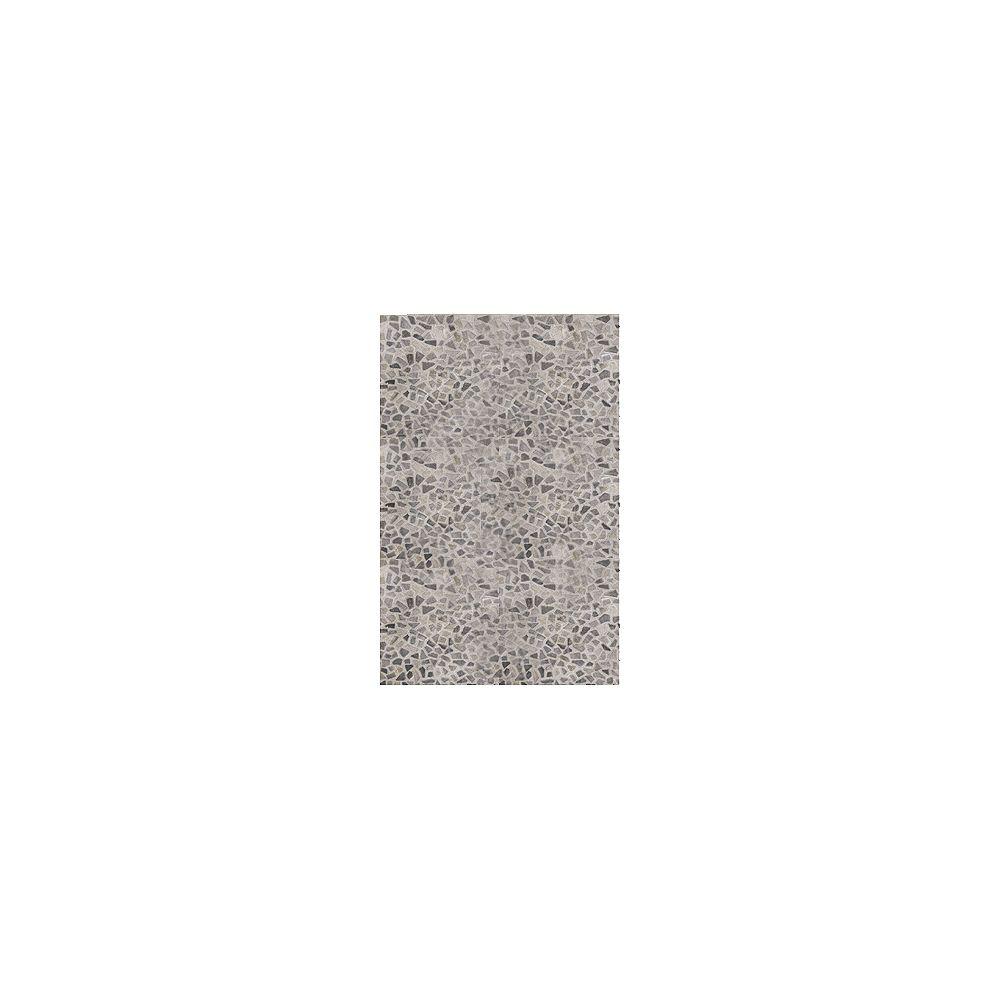 Lanart Rug Carpette, 5 pi x 7 pi, rectangulaire, gris Hide