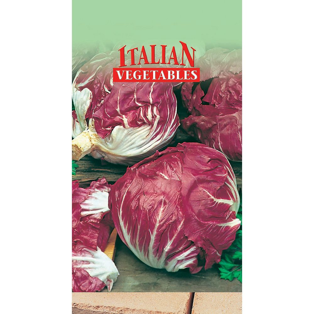 Mr. Fothergill's Seeds Radicchio Di Castlefranco Seeds