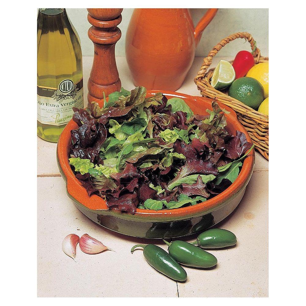 Mr. Fothergill's Seeds Lettuce Mixed Leaf Salad Seeds