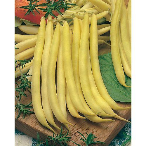 Mr. Fothergill's Seeds Bean Bush Improved Golden Wax Seeds