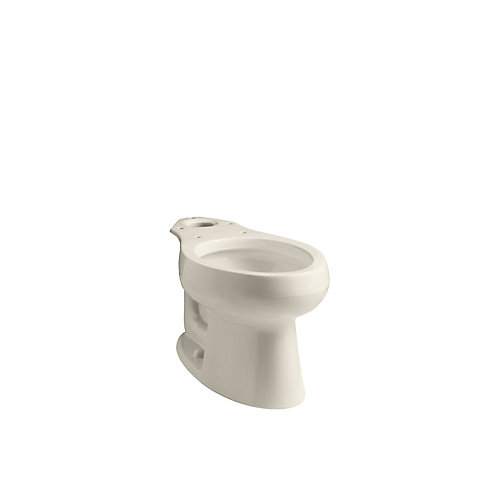 Wellworth Elongated Toilet Bowl Only