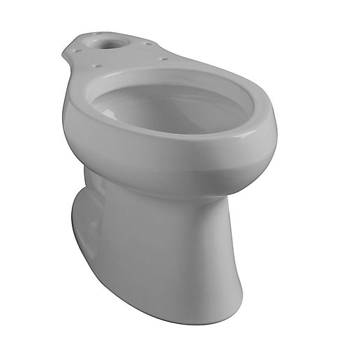 Wellworth Elongated Bowl Toilet Bowl Only