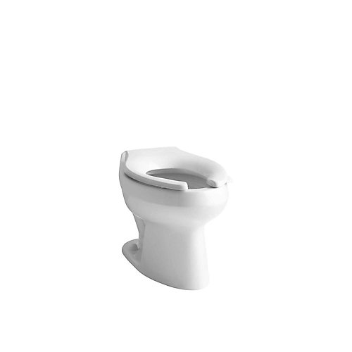 Wellworth Toilet Bowl Only with 1.6/1.28 Gal Flushometer