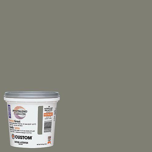Custom Building Products Coulis à base de sable no 9 Gris naturel (453 g)