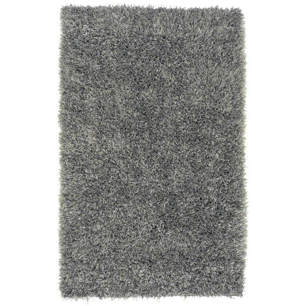 Artistic Weavers Carpette d'intérieur, 3 pi 6 po x 5 pi 6 po, style transitionnel, rectangulaire, gris Kelowna