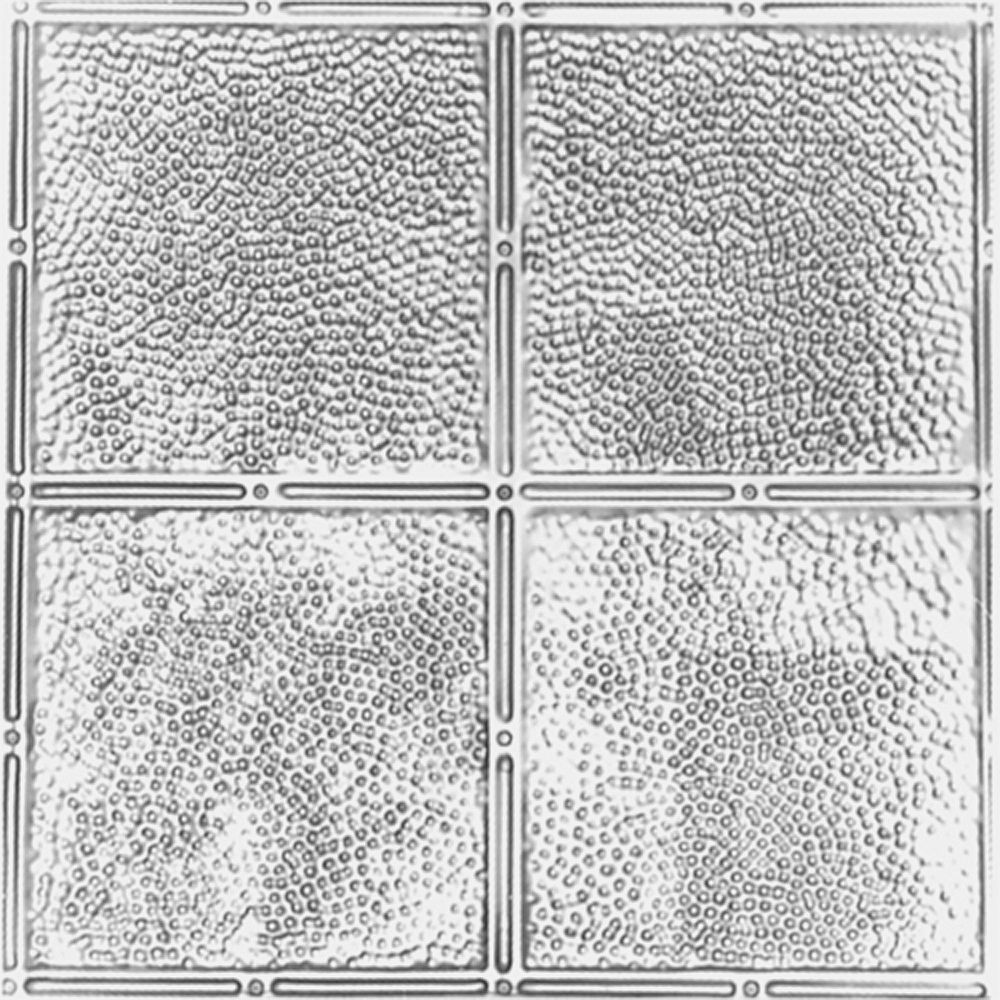 Shanko 2 Feet x 2 Feet Lacquer Steel Finish Lay-In Ceiling Tile  Design Repeat Every 12 Inches