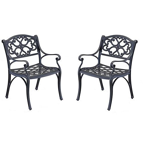 Paire de fauteuils Biscayne noirs