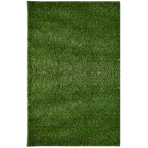 Carpette, 8 pi x 10 pi, à poils long, rectangulaire, vert Grass
