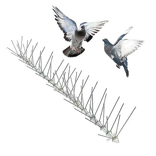 Stainless Bird Spikes 24 Foot Kit Guaranteed Bird Repellent Control
