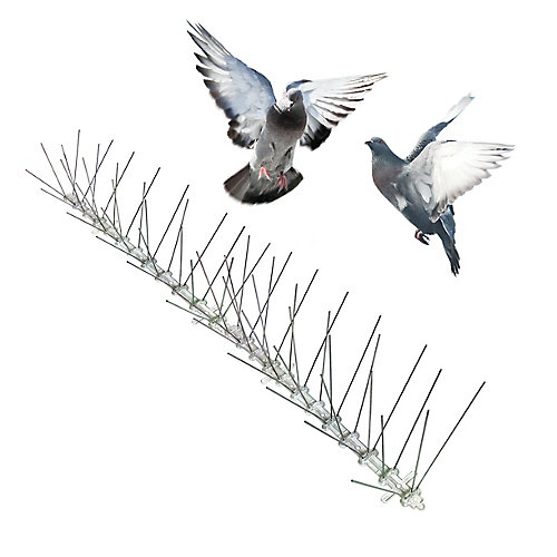 Stainless Bird Spikes 50 Foot Kit Guaranteed Bird Repellent Control #1 Best Seller