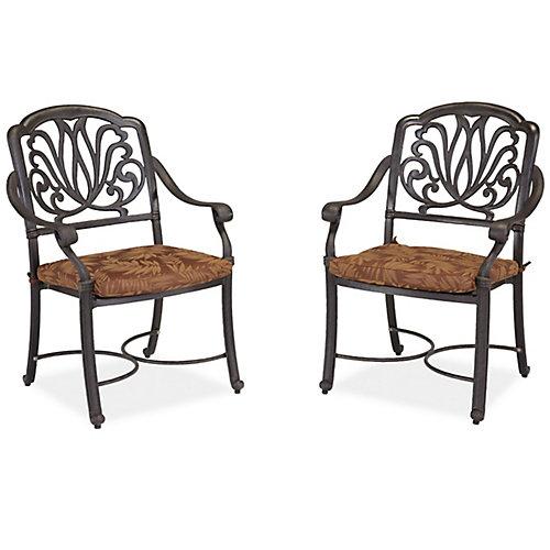 Ensemble de fauteuils avec coussins