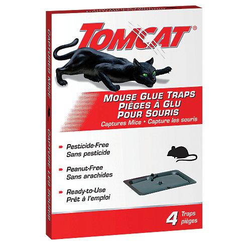 Plaques adhésives pour souris Tomcat