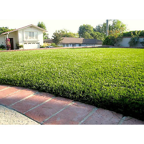Jade 50 3 ft. x 8 ft. Artificial Grass for Outdoor Landscape