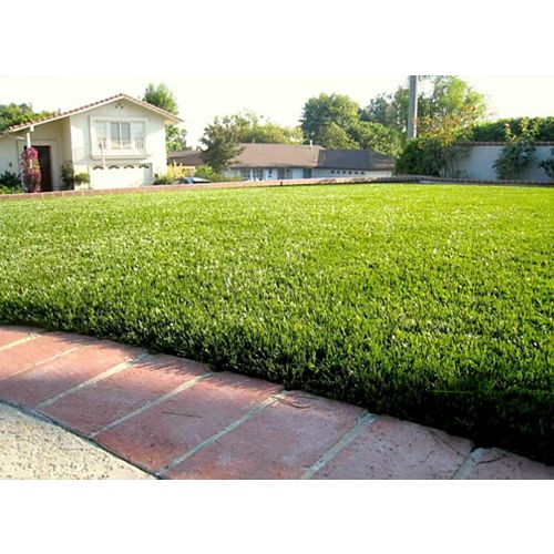 Jade 50 3 ft. x 8 ft. Artificial Grass for Outdoor Landscape