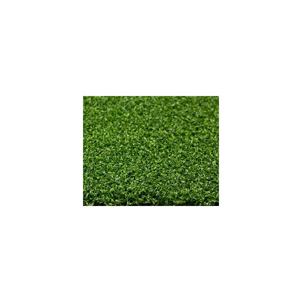 Greenline Putting Green 56 6 ft. x 8 ft. Artificial Grass for Outdoor Landscape