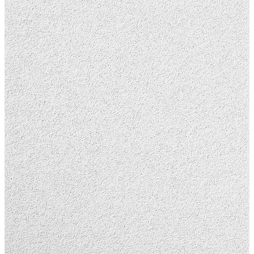 2 ft. x 2 ft. Mars Lay-in Ceiling Tile (Sold by Case - Pack of 12)