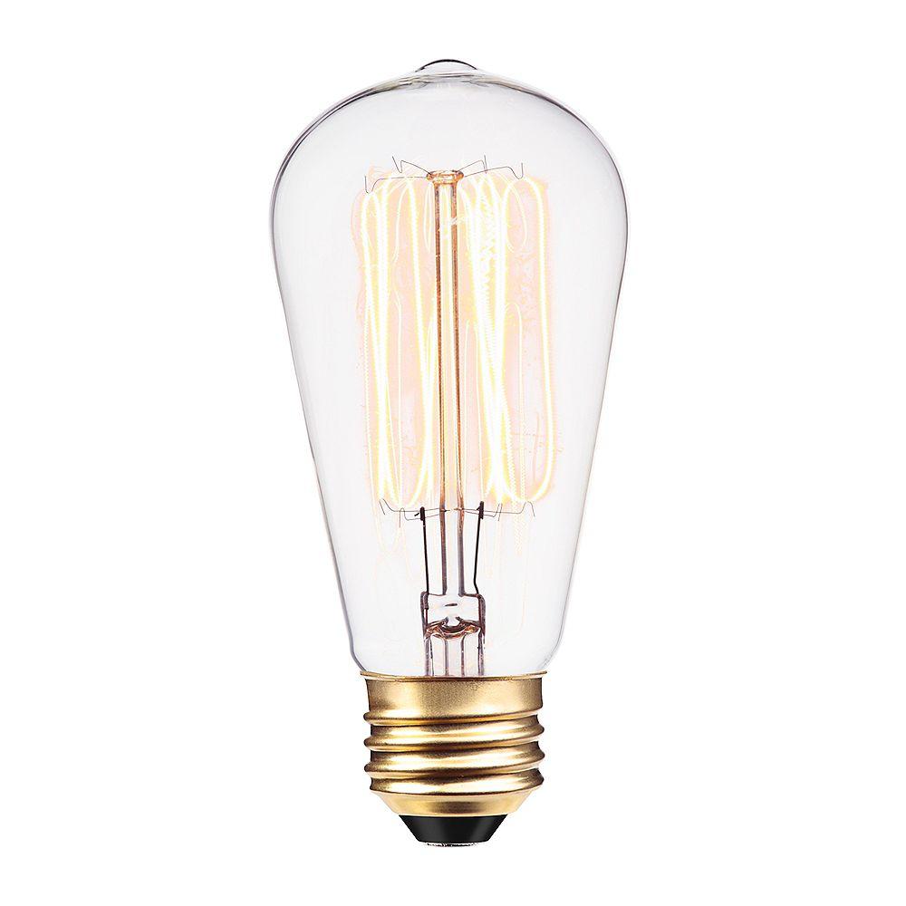 Globe Electric Ampoule incandescente à filament et cage d'écureuil S60 de 60 watts
