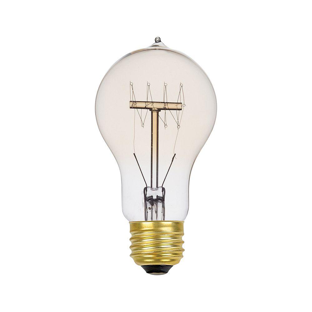 Globe Electric Ampoule style vintage à incandescence Quad loop vintage A19 Edison, culot moyen E26, 60 W