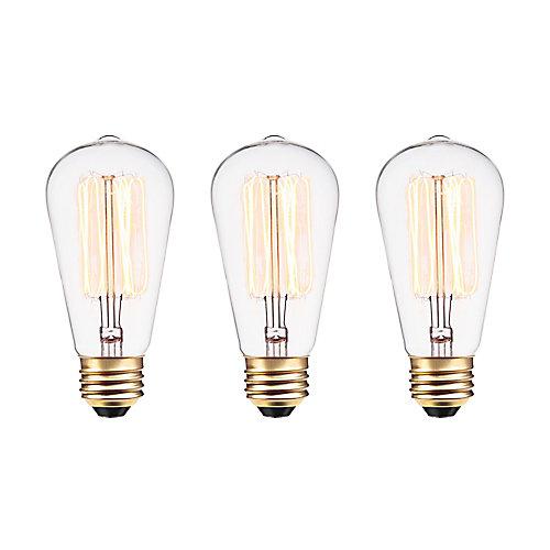 Ampoule style vintage à incandescence Squirrel Cage S60 Edison, culot moyen E26, 60 W, 3/paq.