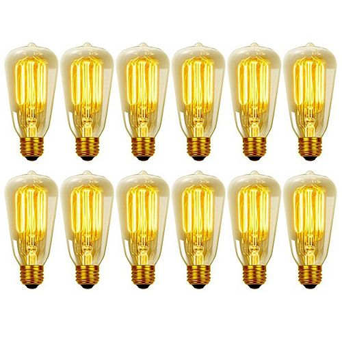 Vintage Edison 60W Incandescent S60 Squirrel Cage Filament Light Bulb with E26 Base (12-Pack)