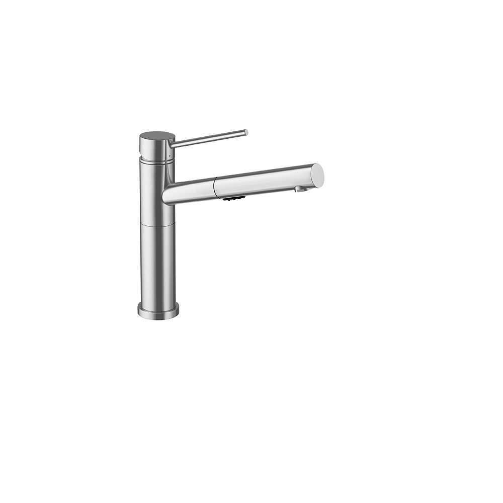 Blanco ALTA, Low-arc Pull-out Kitchen Faucet, 2.2 GPM flow rate (Dual-spray), Classic Steel