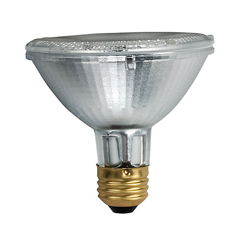 Halogen 50W  PAR30 Short Neck
