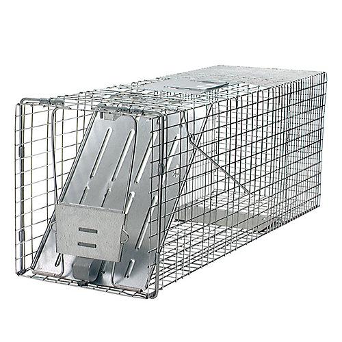 Rac Trap 32-inch x 10-inch x 12-inch 1-Door Animal Trap