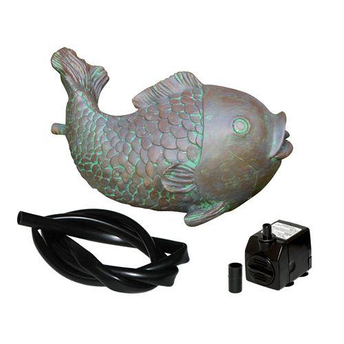 Trousse de poisson cracheur avec tubulure et pompe de 100 gal/h