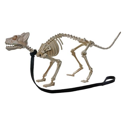 Animated Skeleton Cat with Leash with Light and Sound