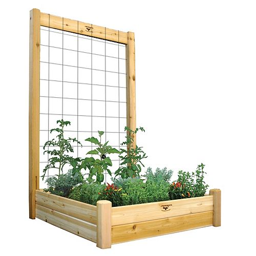 Gronomics 48-inch x 48-inch x 80-inch x 10-inch D Raised Garden Bed with Trellis Kit