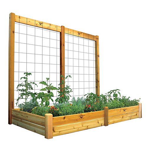 Planche de jardin de 48 x 95 x 13po avec treillis de 95 x 80po, fini non toxique