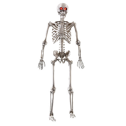 5 ft. LED Adjustable Skeleton