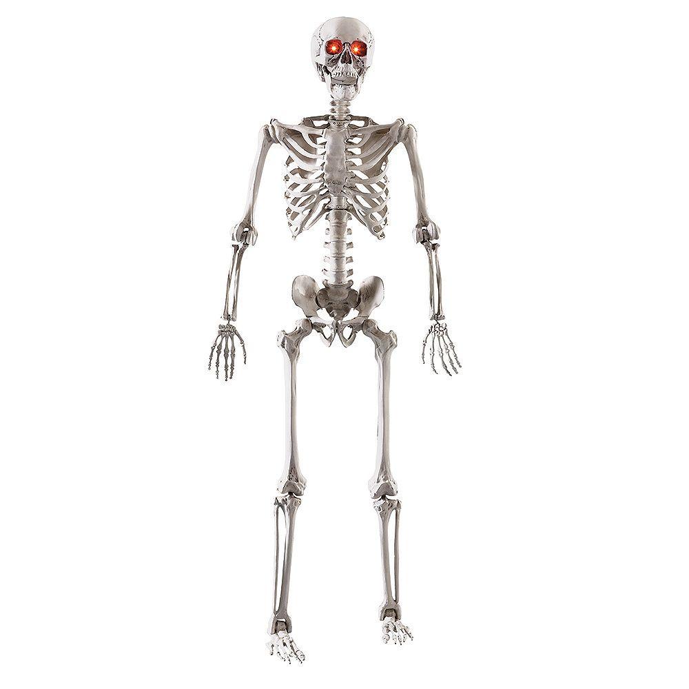 Home Accents Squelette réglable à DEL, 5 pi