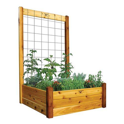 Planche de jardin de 48 x 48 x 19po avec treillis de 48 x 80po, fini non toxique
