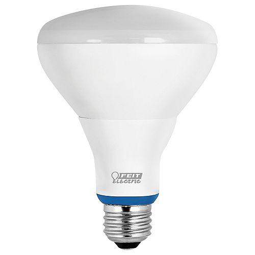 Ampoule à DEL BR30 intelligente avec Bluetooth, réglable avec l'application HomeBrite, BD équivalant à une ampoule de 65W