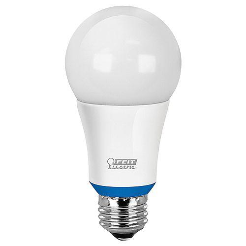 Ampoule à DEL A19 intelligente compatible Bluetooth, réglable avec l'application HomeBrite, d'un blanc doux équivalant à une ampoule de 60W