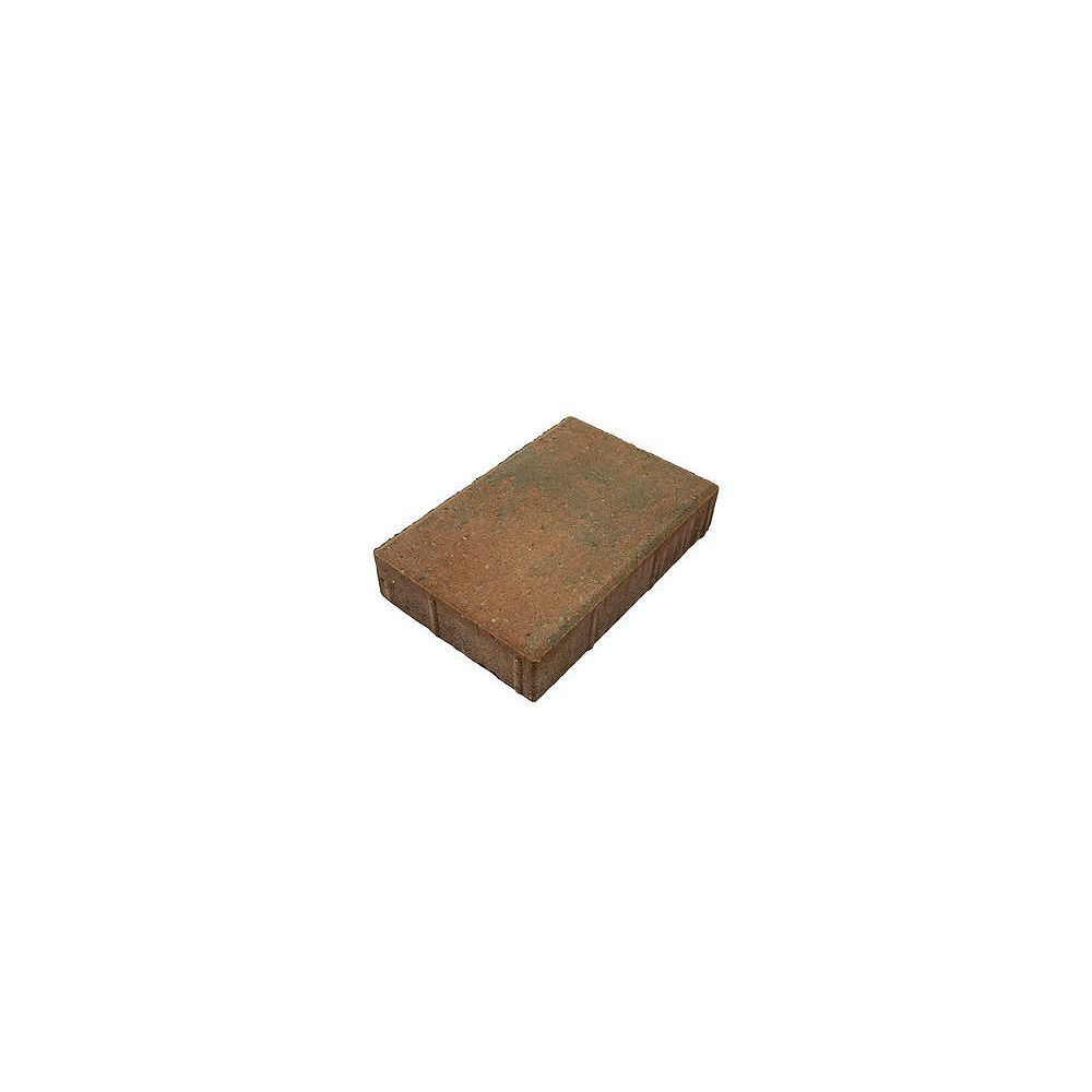 Shaw Brick 12-inch x 8-inch Red/Charcoal Portstone Pavers