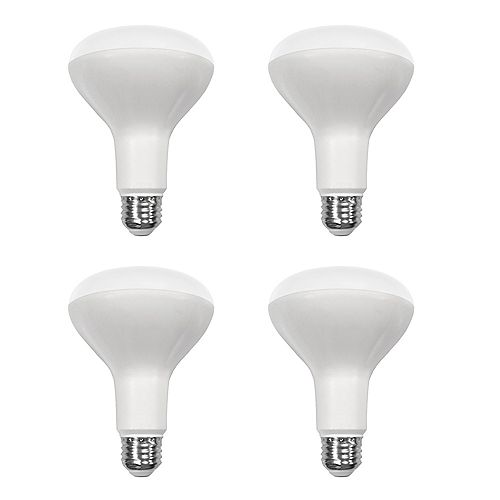 65W Equivalent Daylight (5000K) BR30 Dimmable LED Light Bulb (4-Pack) - ENERGY STAR®