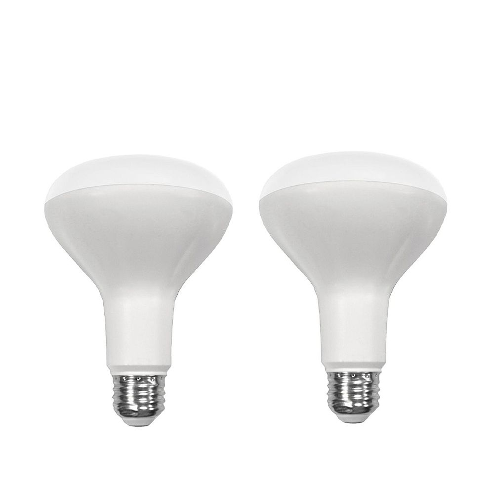 Ecosmart Ampoule à DEL BR30 à intensité réglable, lumière naturelle (5000K), équivalant à 65 W (paquet de 2)