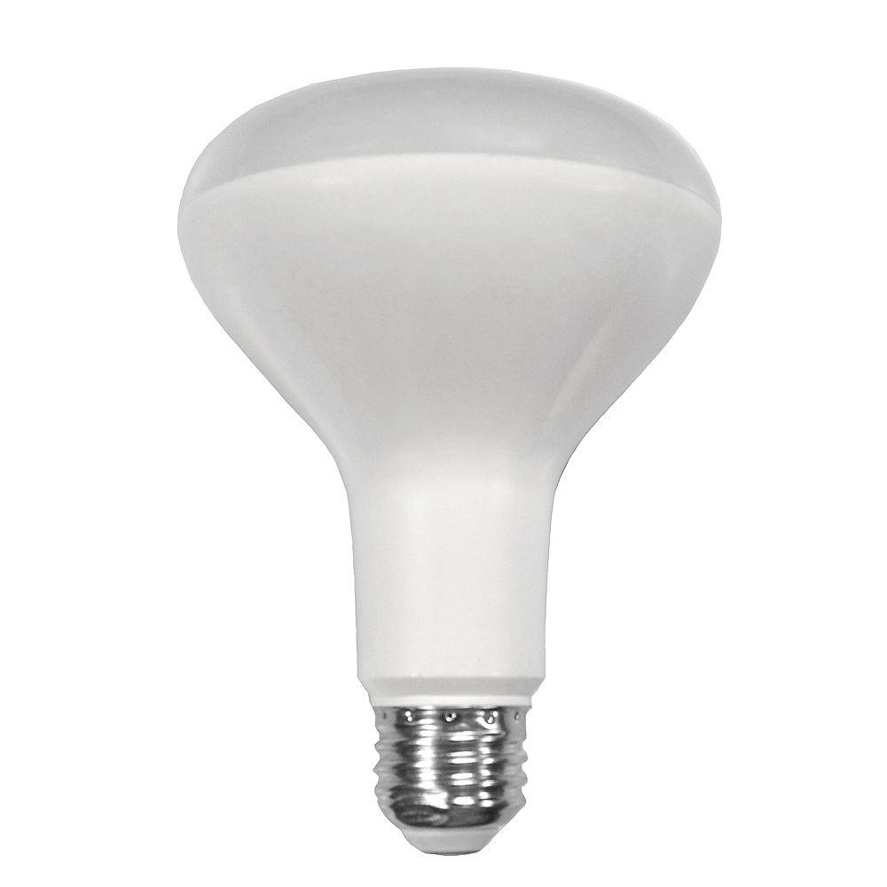 Ecosmart Ampoule à DEL BR30 à intensité réglable, blanc doux (2 700K), équivalant à 65 W