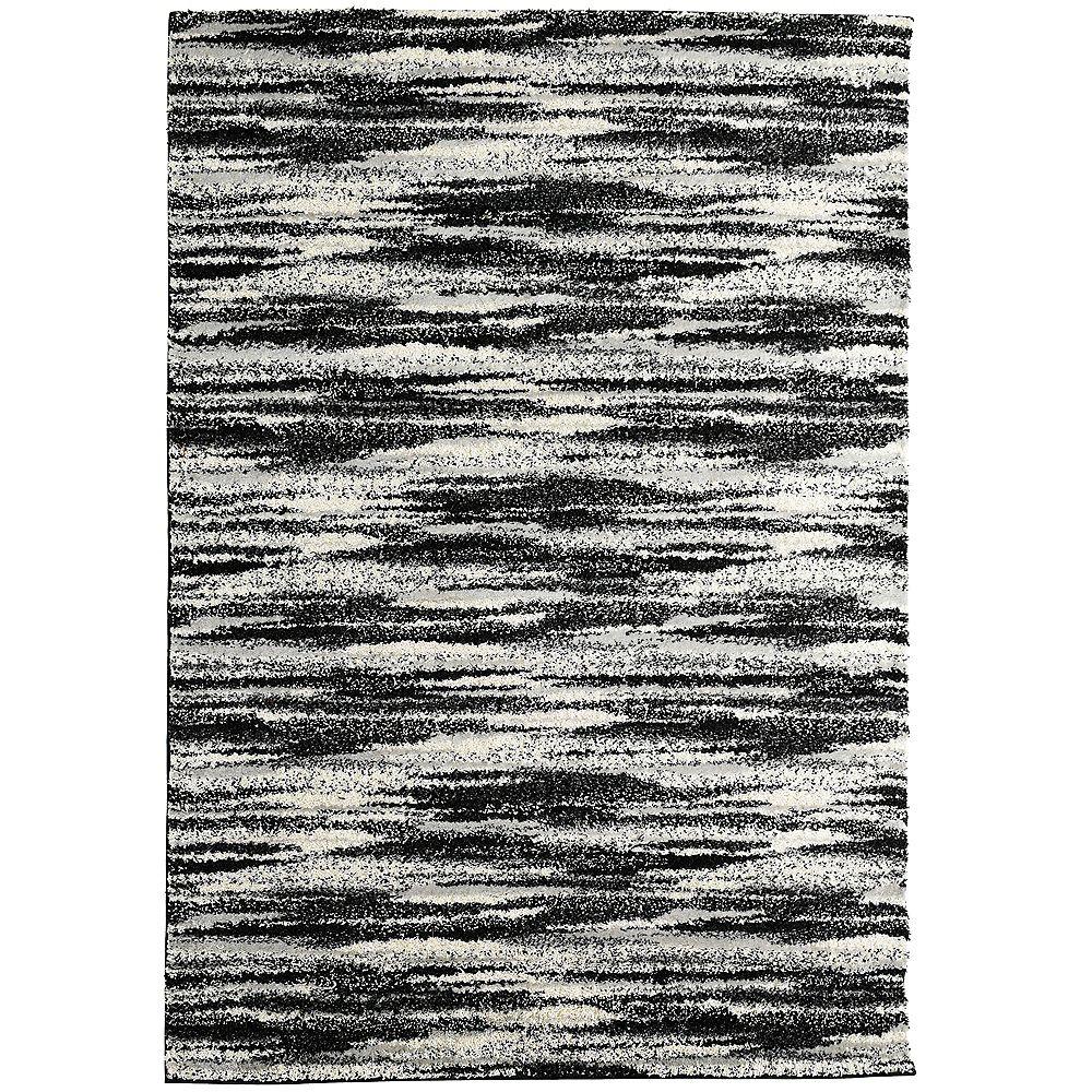 Lanart Rug Carpette d'intérieur, 5 pi x 7 pi 6 po, style contemporain, rectangulaire, noir Scandinavia