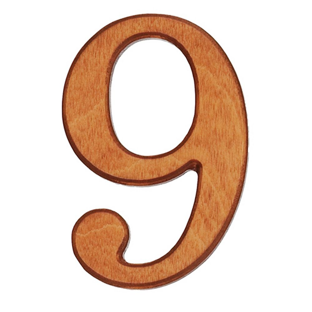 PRO-DF Wood Numbers, Honey Gold 4 Inches #9