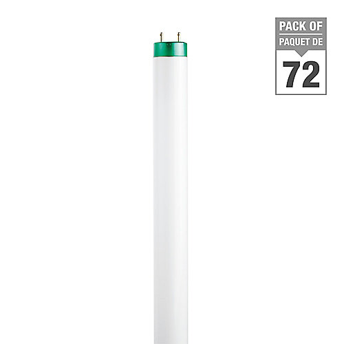 32W Cool White 48 inch T8 Fluorescent Light Bulb (72-pack)