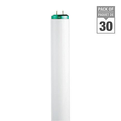 40W T12 48-inch Daylight Fluorescent Light Bulb (30-Pack)