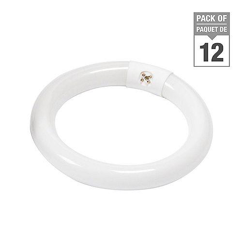 Philips 22W T9 8-inch Circline Soft White Fluorescent Light Bulb (12-Pack)