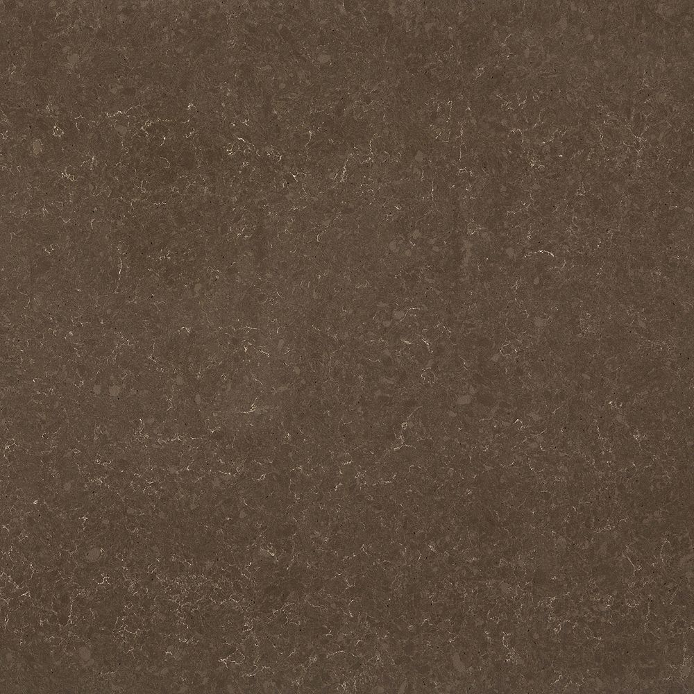 Silestone 4-inch x 4-inch Quartz Countertop Sample in Iron Bark
