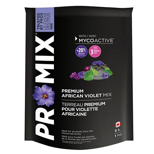 African Violet Mix
