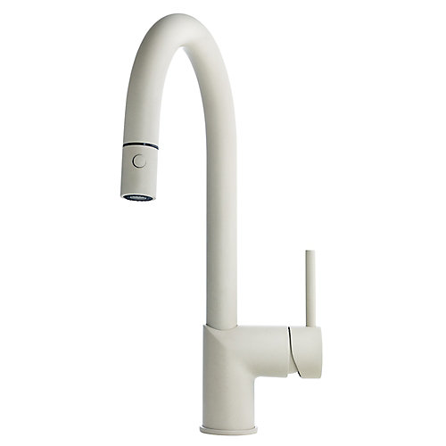 Gooseneck pull down faucet Cha